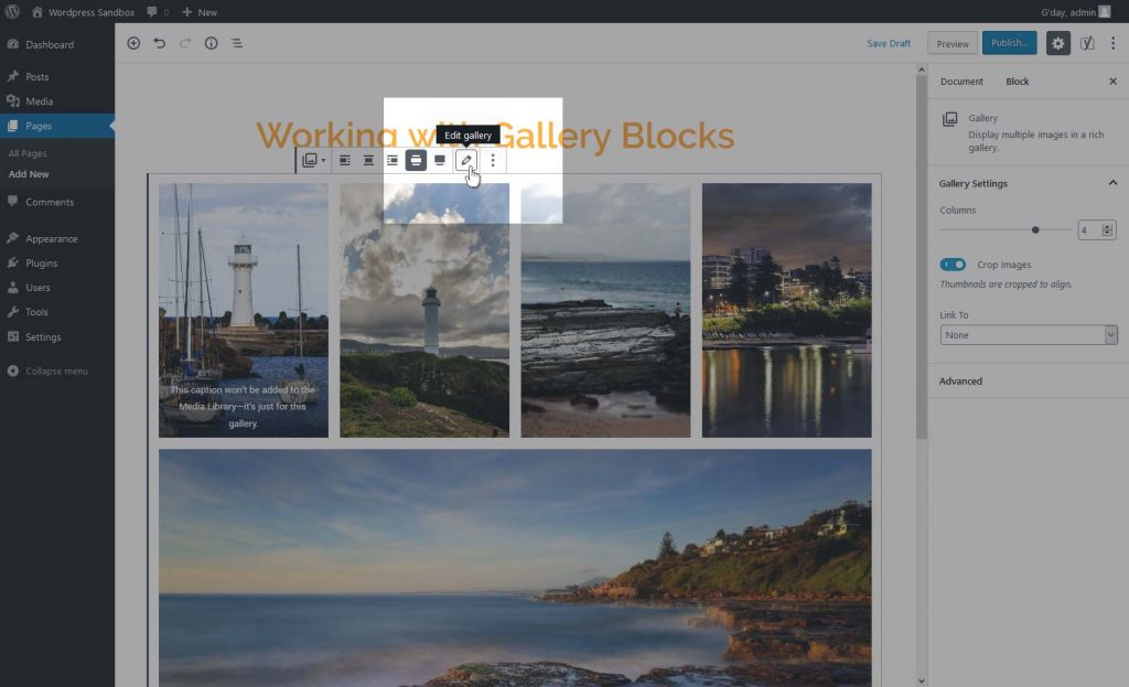 "Locating the ""Edit Gallery"" button"